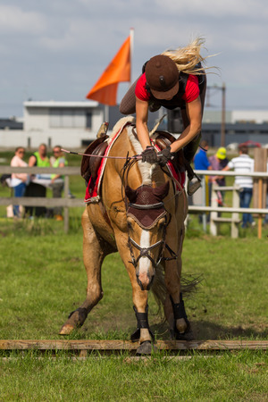 light brown horse: Voorhout, The Netherlands - June 15, 2014 - Rider falling from a horse at a cross event, photo taken june 15th, 2014