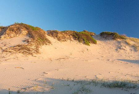 surfers paradise: Beautiful scene with sunrise over the dunes and sand grass in the foreground, Myall Lakes National Park, Australia Stock Photo