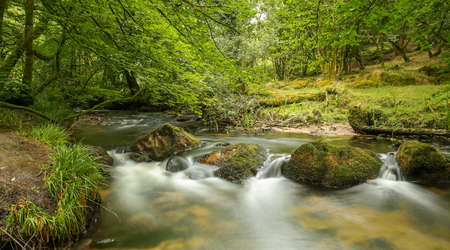 Golitha Falls is a series of small water falls in the heart of Bodmin Moor near Liskeard Cornwall covered by trees. Long exposure. Photo taken on July 21, 2018: