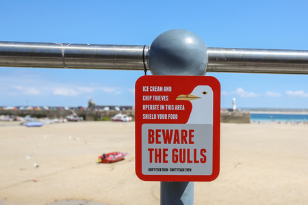 Beware the seagulls sign near the beach. Seagulls steel icecreams and other food of tourists. Dont feed them