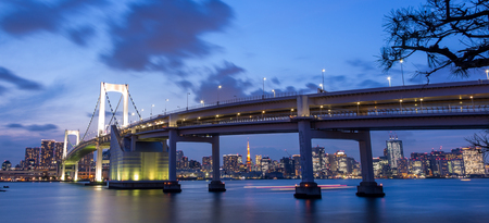 Tokyo Rainbow bridge and Tokyo Tower at sunset (blue hour) with scenic night illumination