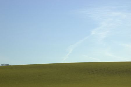 A green field with a blue sky in winter Stock Photo - 767252
