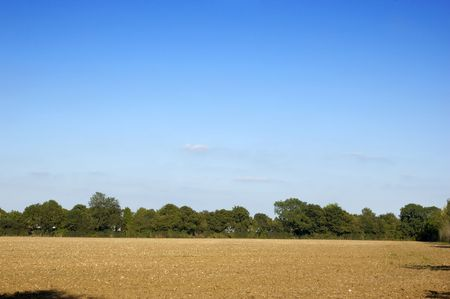 ploughed: A ploughed field in summer