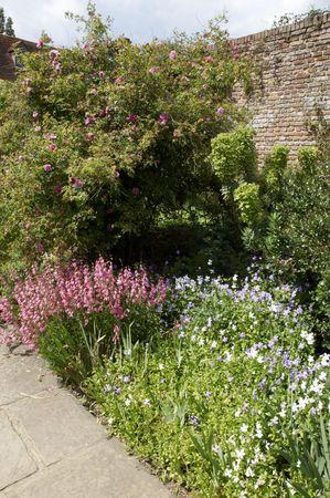 A view of garden flower beds in summer photo