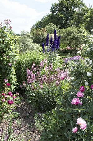A view of garden flower beds in summer Stock Photo - 5492179