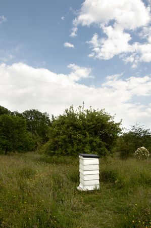 A bee hive in field of grass with a cloudy sky photo