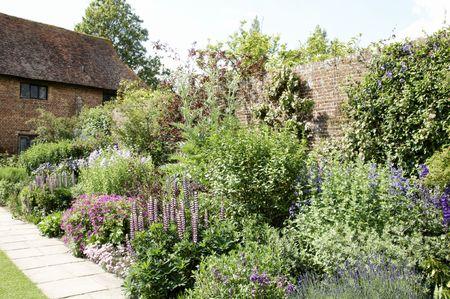 A border in an English cottage garden photo