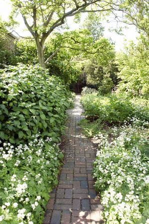 cottage garden: A   herbaceous border in an English cottage garden