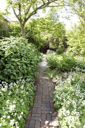 Une bordure herbac�e dans un jardin de cottage Anglais