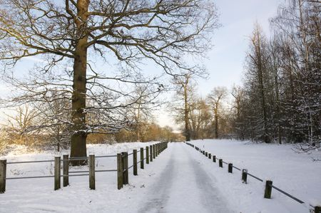 A footpath covered in snow with a fence photo