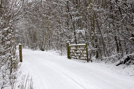 A gate on a country lane covered in snow photo