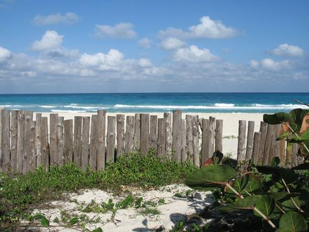 wild beach view Stock Photo