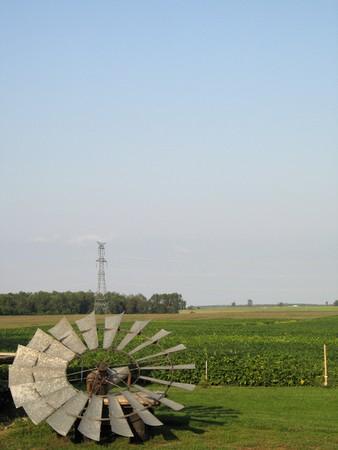agricultural green field Stok Fotoğraf