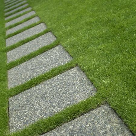 cut grass: Grass and tiles path