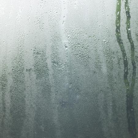 Rain drop in a window