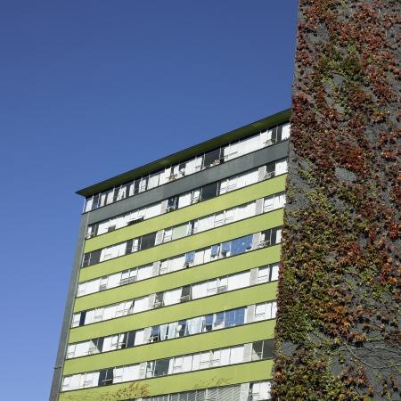 Retro Apartment Complex With Vine Wall Stock Photo