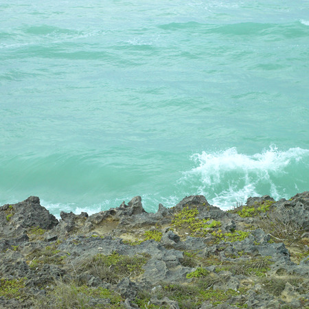 Green tropical wave crashing on a coral cliff photo