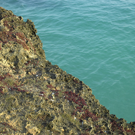 coral and turquoise ocean photo