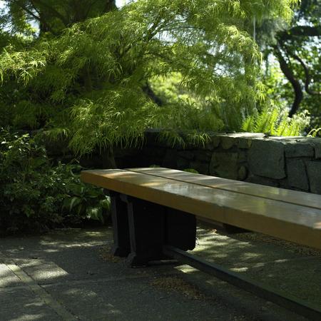 urbanized: Wooden bench in a green garden