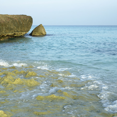 pristine coral reef: Cliff and ocean