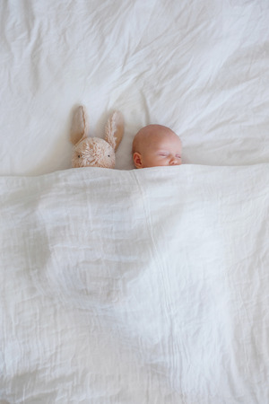 Newborn and plush rabbit tucked into a cozy white bed