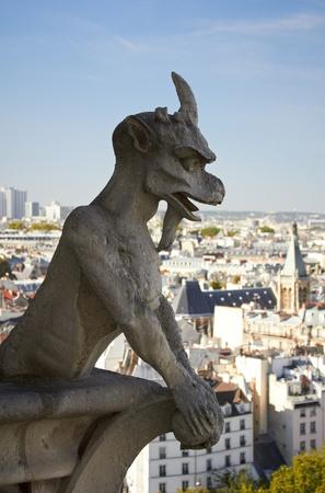 Gargoyle and view from Notre Dame de Paris photo