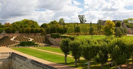 Garden of Amboise Castle, France photo