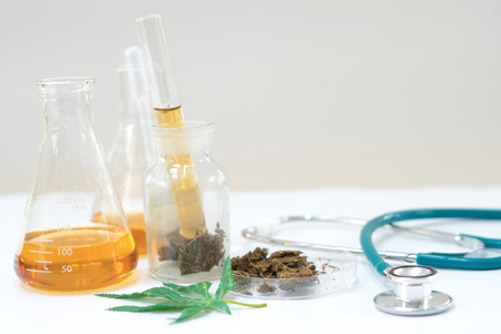 Marijuana research in the lab