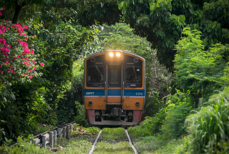 BANGKOK, THAILAND-September 11,2018; Train through the tree tunnel , Thai Railway Wongwain yai to Mahachai Line , Thai Suburban train.