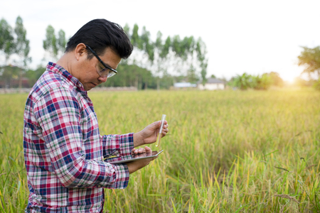 Faculty of Engineering holds a lot of rice oil research on rice fields.