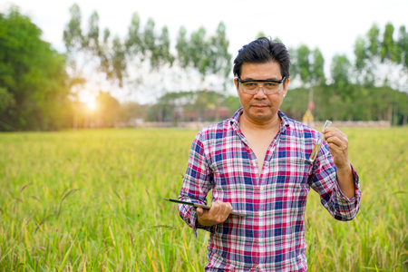 Rice researchers hold a lot of liquids and glass tubes on rice fields.