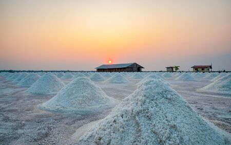Worker in salt farm and keep white salt before packing to farmhouse