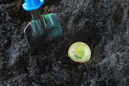 Bitcoin gold coins and shovel gardening tool. Virtual cryptocurrency mining concept.