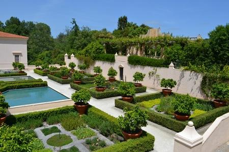 newzealand: A view of a beautiful well organized green garden