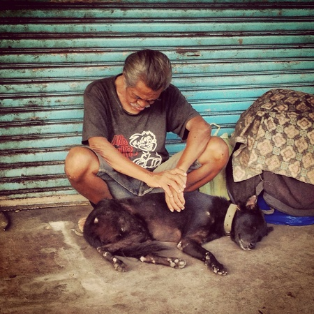 man: A homeless man with a dog  on the street
