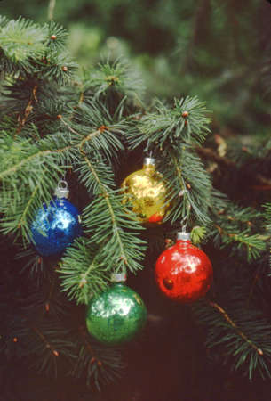 christmastree: Christmastree branch with Ornaments