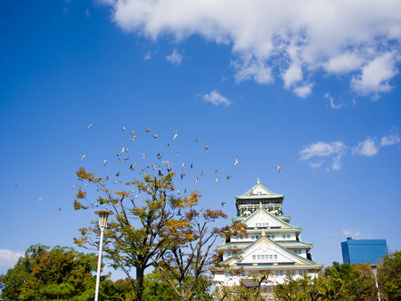Osaka castle with bird in the sky Editorial