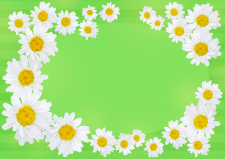 与拷贝空间的牛眼雏菊在绿色背景,卡片概念