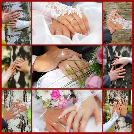 Collage from wedding photos. Nine in one photo