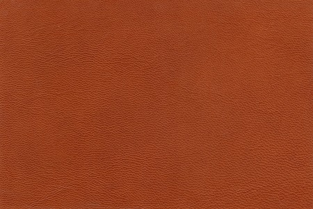 rudy: Texture of sheep skin of reddish color.