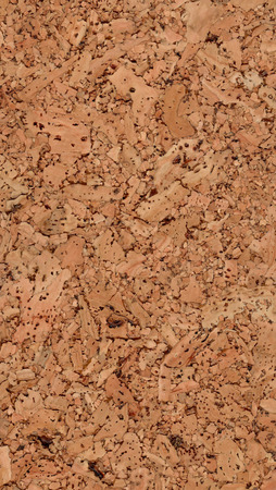 corkwood: Texture of a natural light brown corkwood with large parts