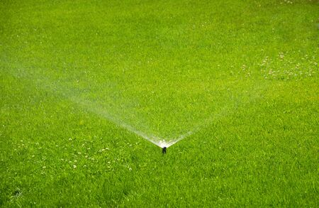 Watering, automatic sprinkler working on green grass.