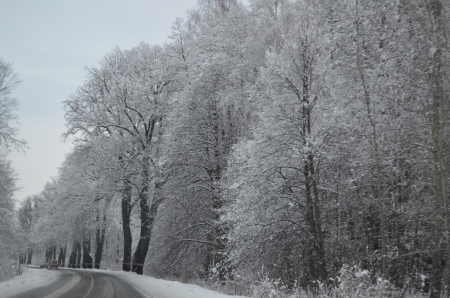 Russian roads in the winter photo
