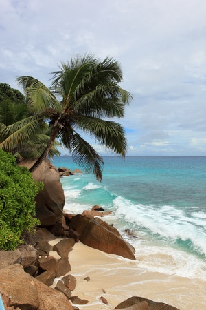 beach of seychelles photo