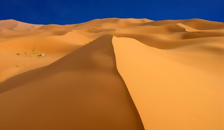 oases dunes and well photo
