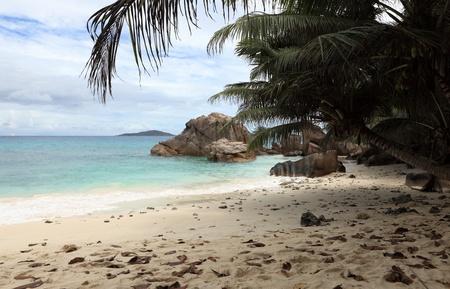 beach of seychelles photo