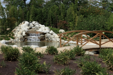 small waterfall garden photo