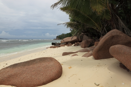 wild beach seychelles photo