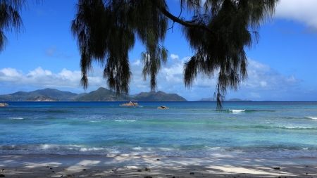 d argent: seychelles beach Stock Photo