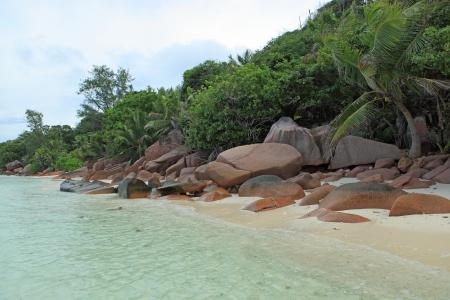 wild beach seychelles photo